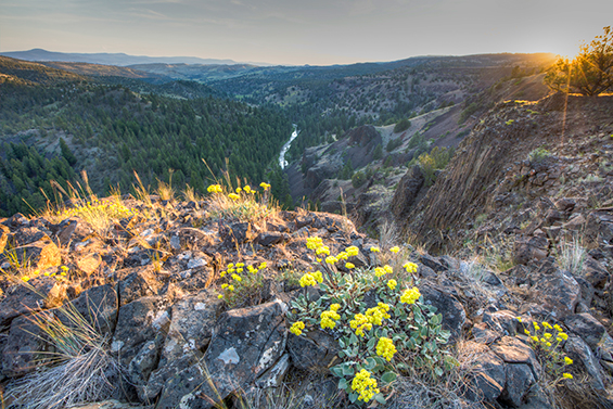 North Fork of the Crooked River, Oregon