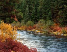 Sprague River North Fork Oregon